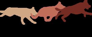 Nordisk Hundemassasjeskole AS